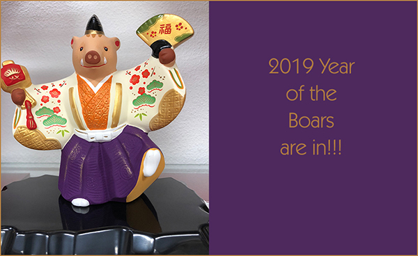 2019 Year of the Boar